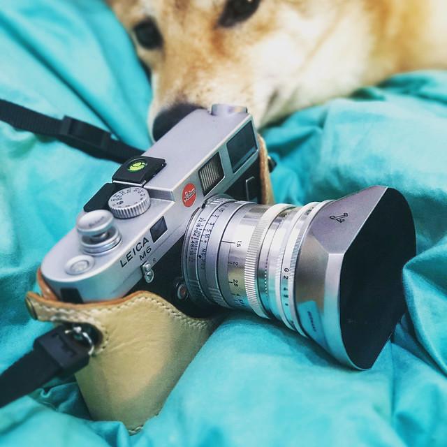 Voigtlander Prominent 50mm f1.5 至尊感受