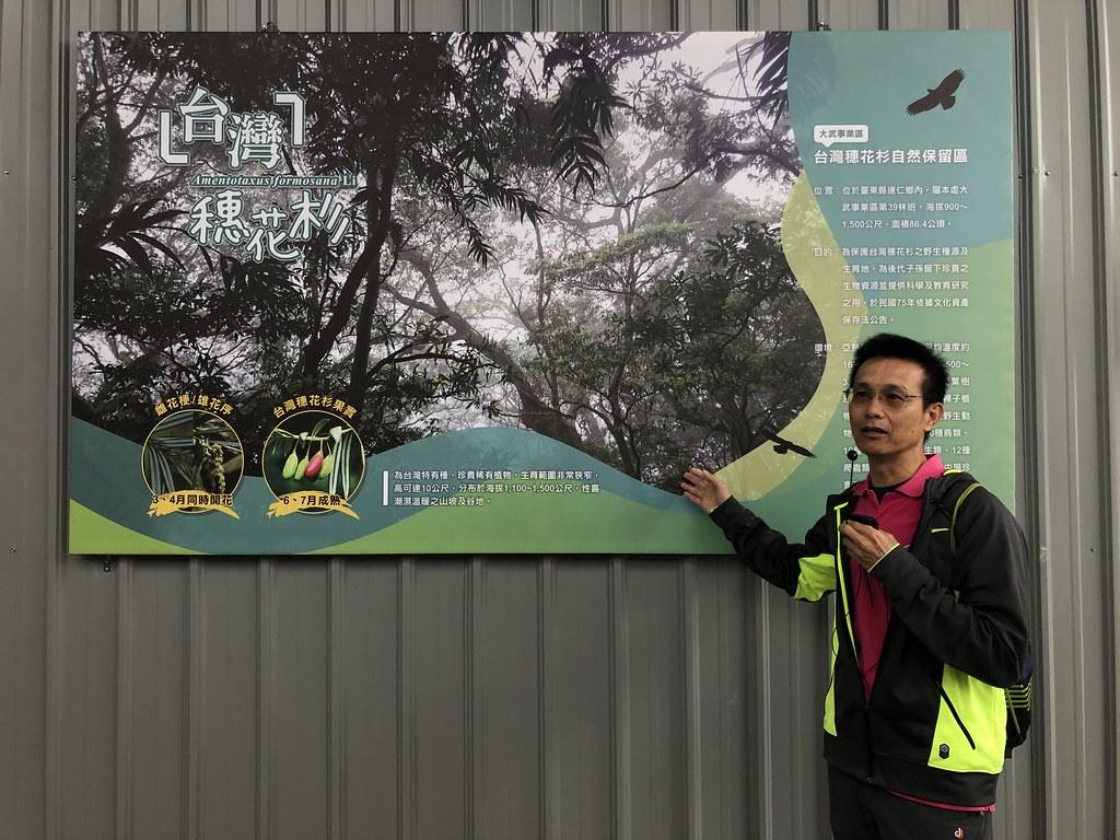 台東林區管理處秘書朱木生說明台灣穗花杉育苗過程。