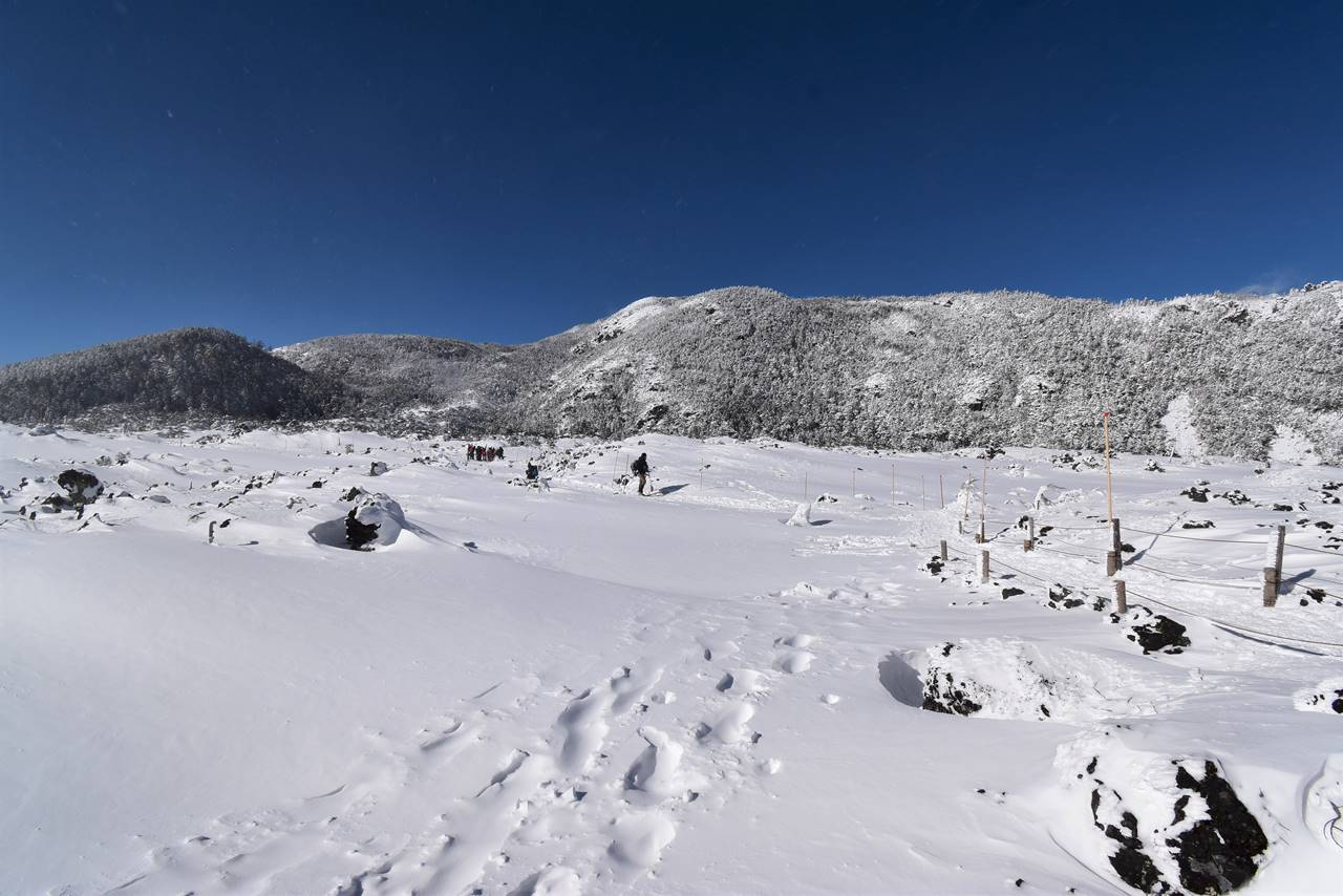 坪庭の雪原ハイク