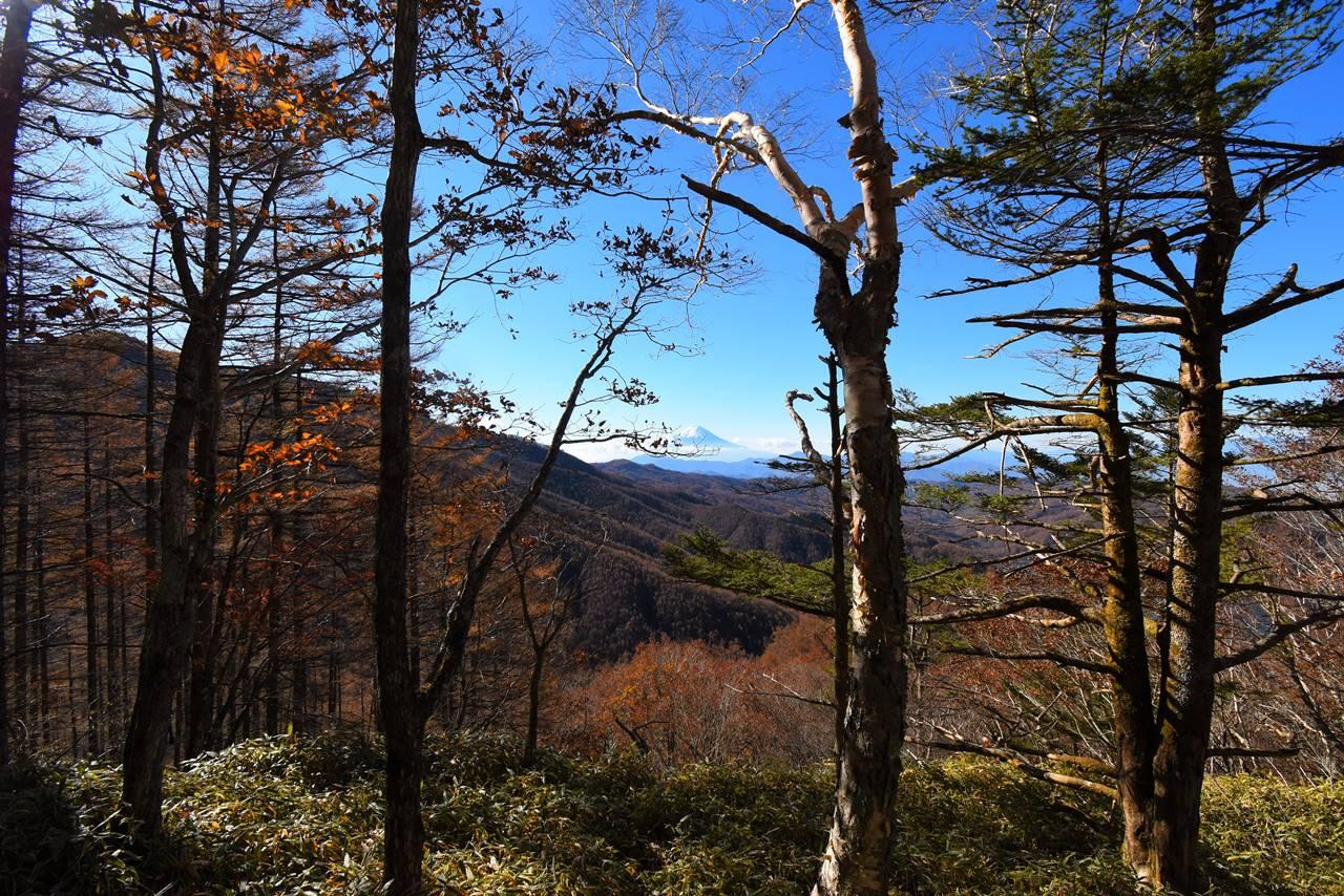 石丸峠登山道からの富士山
