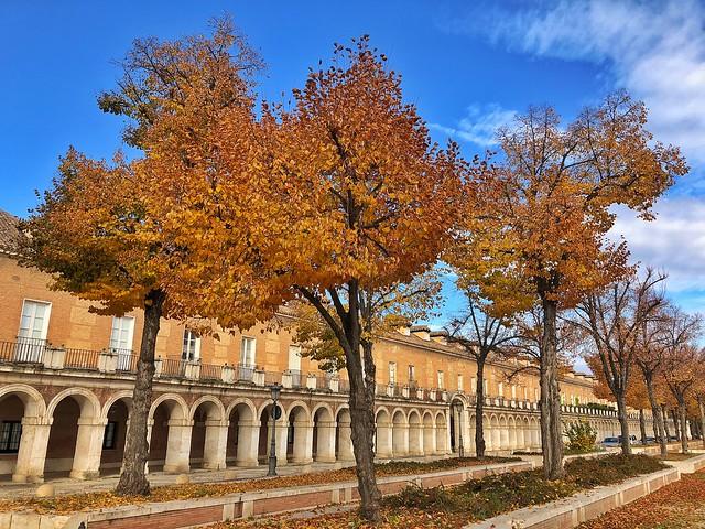 Plaza de San Antonio de Aranjuez en otoño