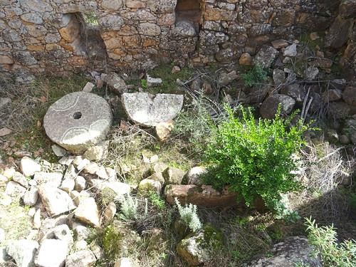 Ghjaducci : les meules du moulin