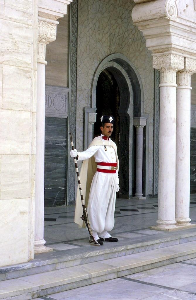 La Garde Royale Marocaine / Moroccan Royal Guard - Page 11 45227844455_922ecc3f2a_o