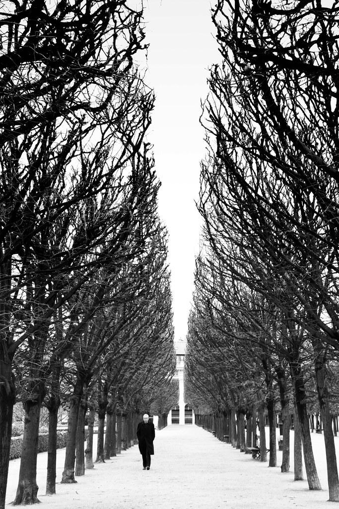 Jardin Du Palais Royal Paris France 2018 Julien Fourniol Flickr