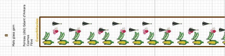 Plan du potager 2019 - Planche 8 - Avril