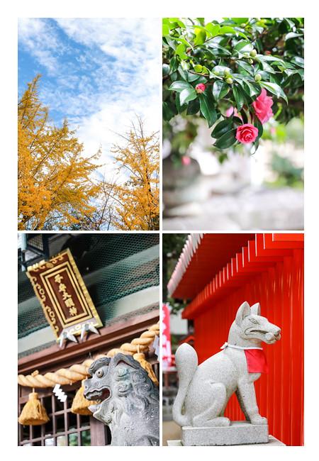 挙母神社の秋(愛知県豊田市)