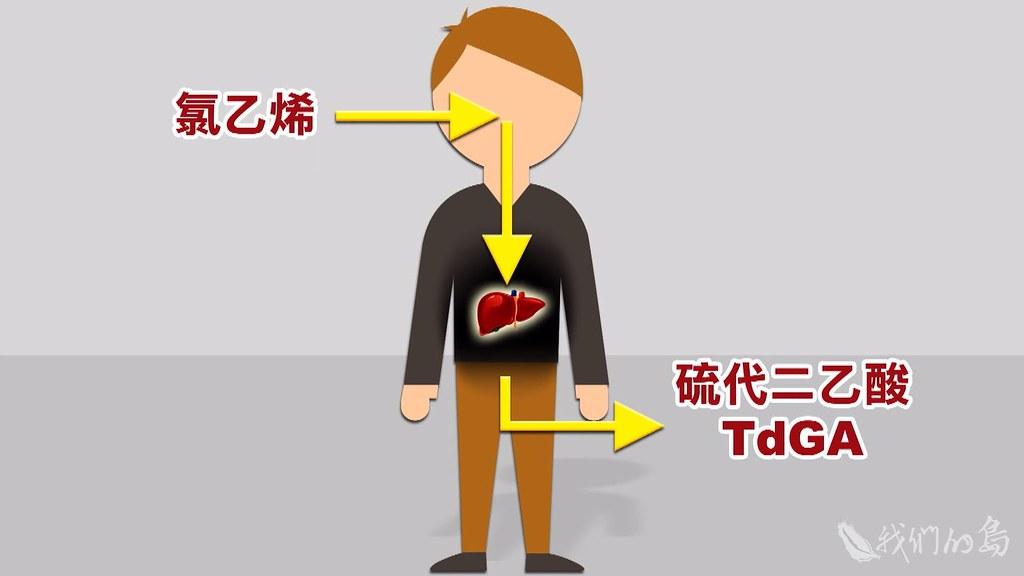 受體檢學童尿液中,驗出硫代二乙酸,這是人體吸入氯乙烯之後,產生的代謝物。