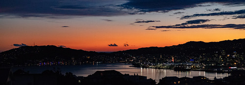 Wellington | by Jose David