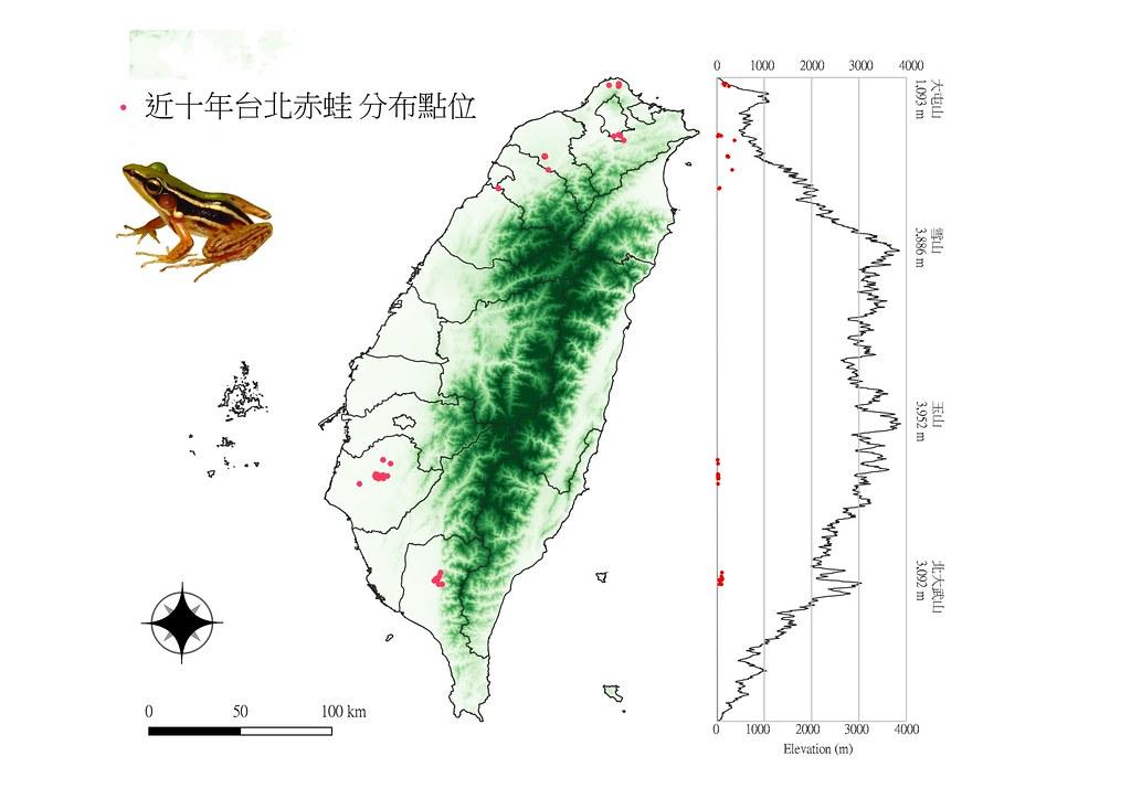 台北赤蛙分布點位