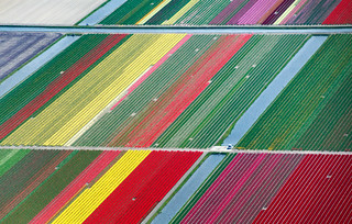 Holland from the air | by Frans.Sellies
