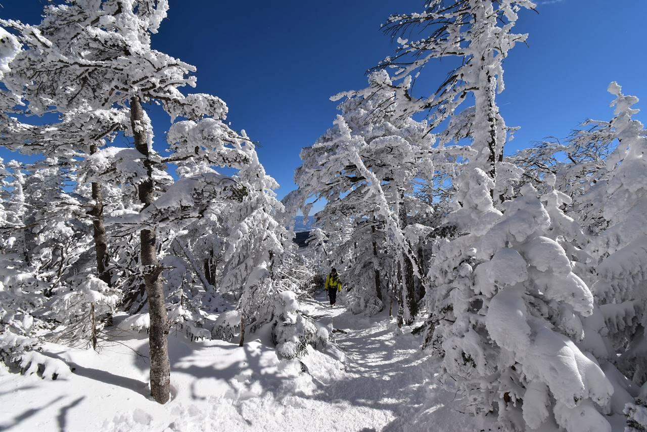 北横岳 雪山ハイク