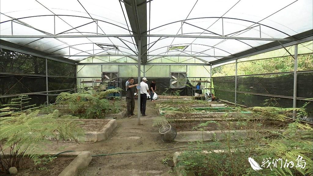 水庫北面設置了植物保存園區,將淹沒區中受波及的部分樹木移植。