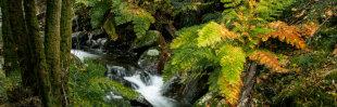Arco-Íris Reloaded: Cascata da Pedra Ferida