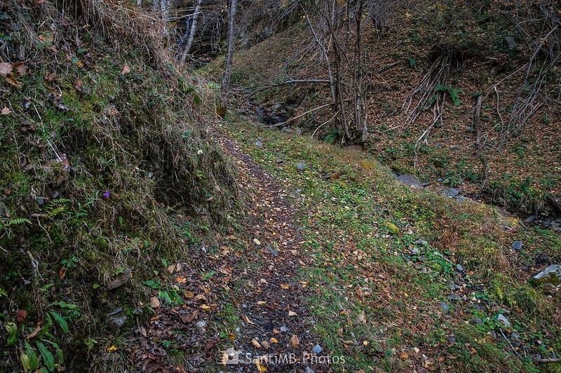 Sendero en la Val de Toran