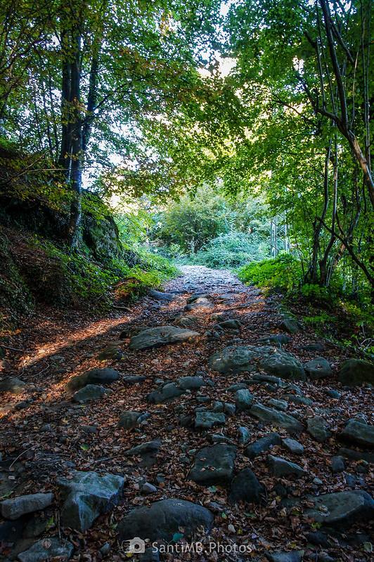Camino a las Roques Encantades