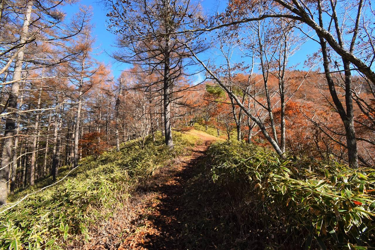 秋の大菩薩・石丸峠登山
