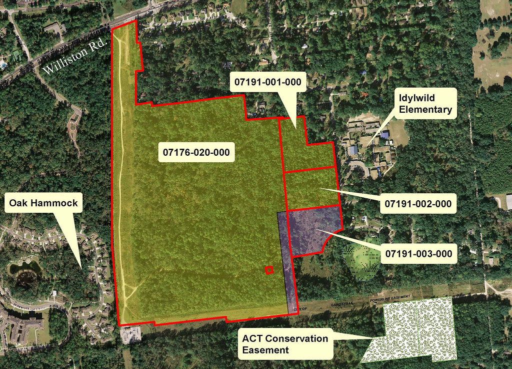 Illegal Digging Harms Gainesville's Urban Creeks