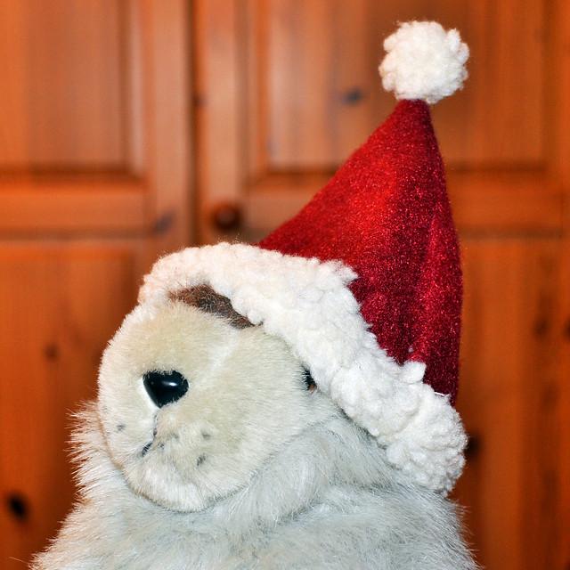 Dezember 2018: Weihnachtsfrau Karla Kunstwadl --- Foto: Brigitte Stolle