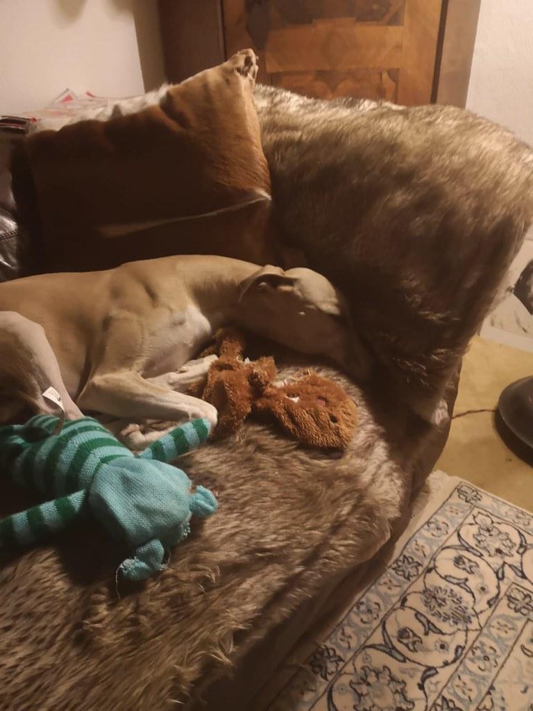 Schlafend auf seinem Thron