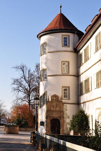 November 2018 ... Bad Rappenau, Schlosspark, Wasserschloss, Rappe ... Foto: Brigitte Stolle