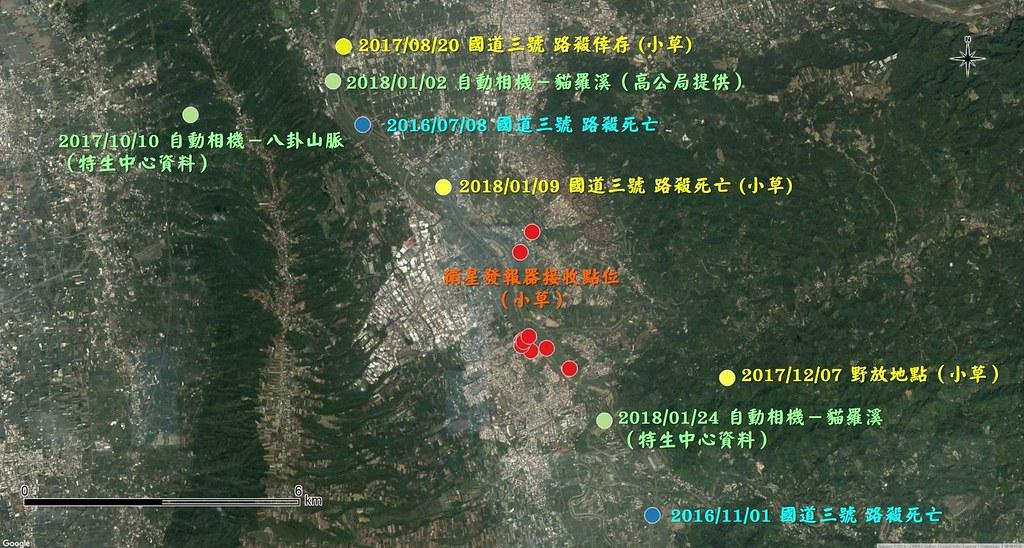 貓羅溪沿線石虎資料