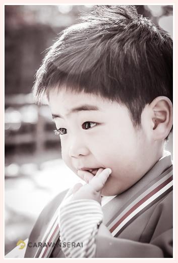 七五三 3歳の男の子 モノクロ