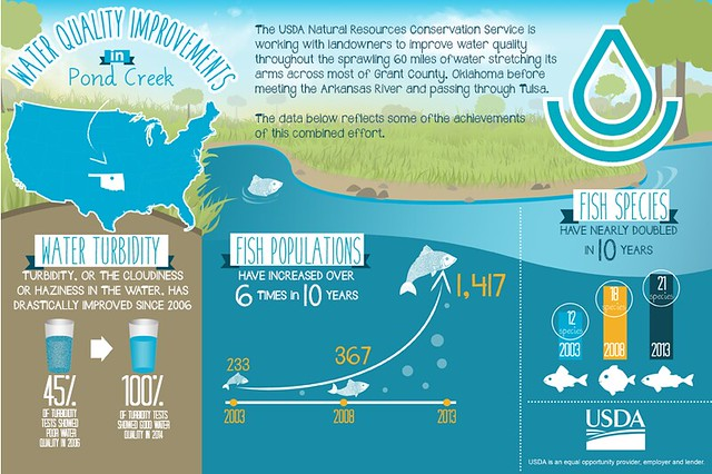 Water Quality Improvements in Pond Creek infographic