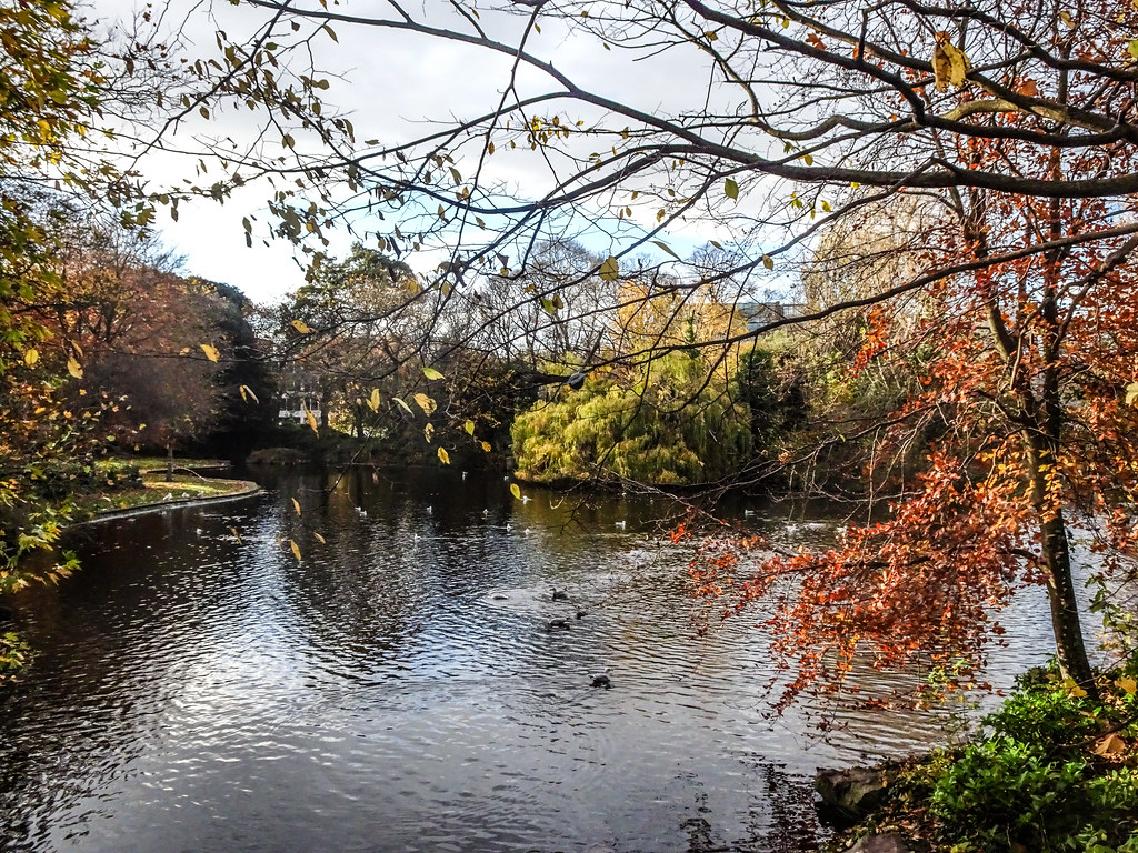 ST. STEPHEN'S GREEN IN AUTUMN 019