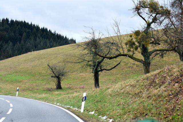 27. Januar 2019 ... Kleine Odenwald-Rundfahrt von Mannheim aus ... Unterwegsbilder - Fotos aus dem fahrenden Auto ... Schnee, Statuette Reiterin, Felder, Heiligkreuz, Ursenbach, Schriesheim ... Fotos: Brigitte Stolle