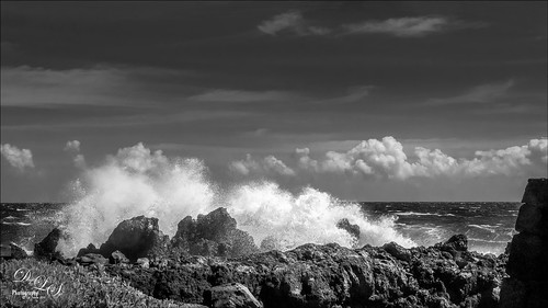 B&W image of Laupahoehoe Harbor on the Big Island in Hawaii
