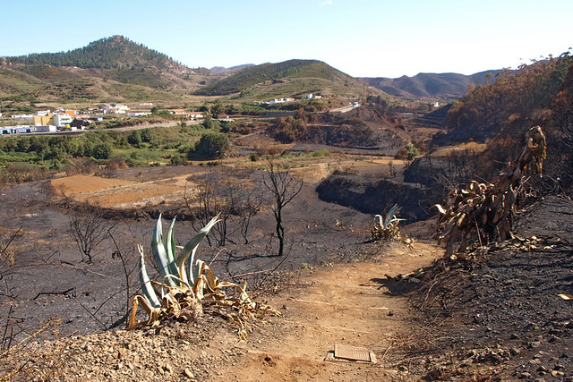 Fire ravaged Erjos, Tenerife