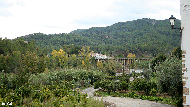 Fanzara MIAU