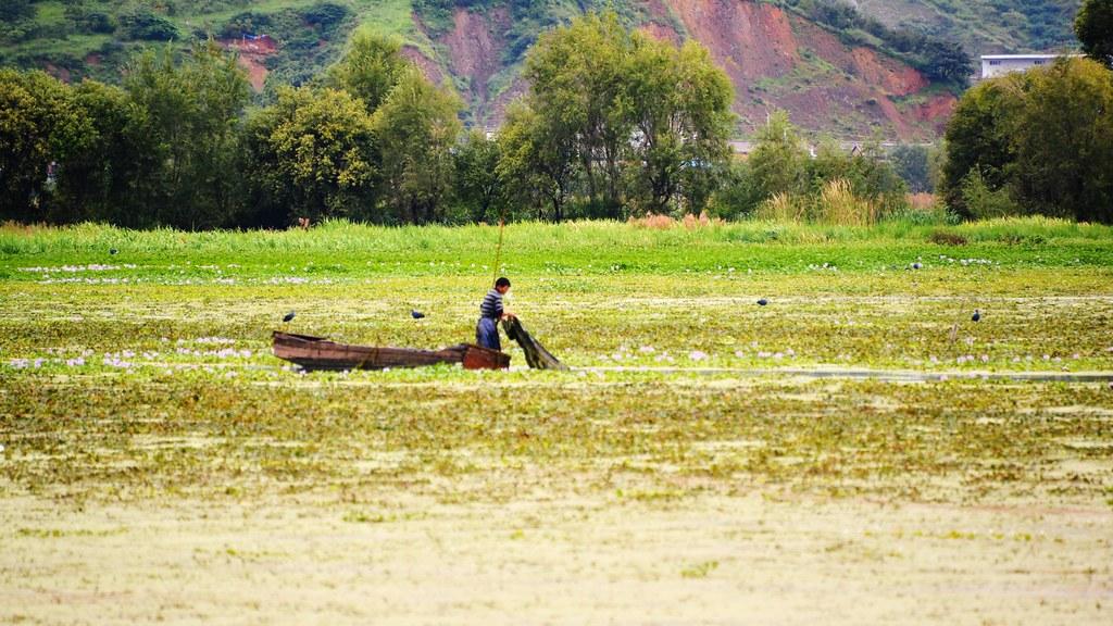 洱海在經濟與生態間,尋找永續平衡的道路。攝影:郭志榮