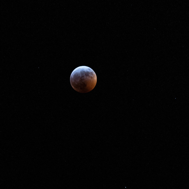 Lunar eclipse, 1/20/19