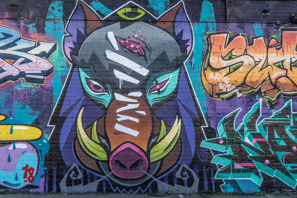 STREET ART AT THE TIVOLI CAR PARK - NOVEMBER 2018 013