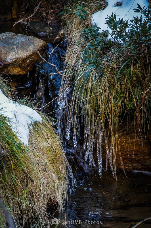 Hierbas heladas en la orilla del arrollo de Artarán