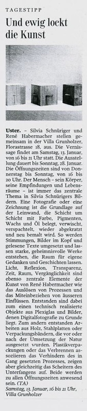 2008 – Villa Grunholzer – Tages Anzeiger