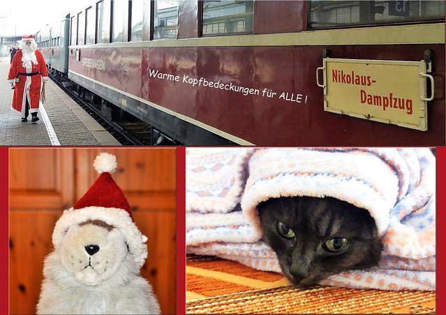 Dezember 2018: Nikolaus-Dampfzug, Katze Mimette, Weihnachtsmurmeltier Karla Kunstwadl