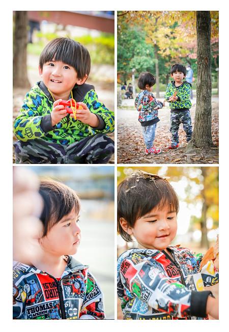 秋の紅葉 公園で遊ぶ男の子兄弟