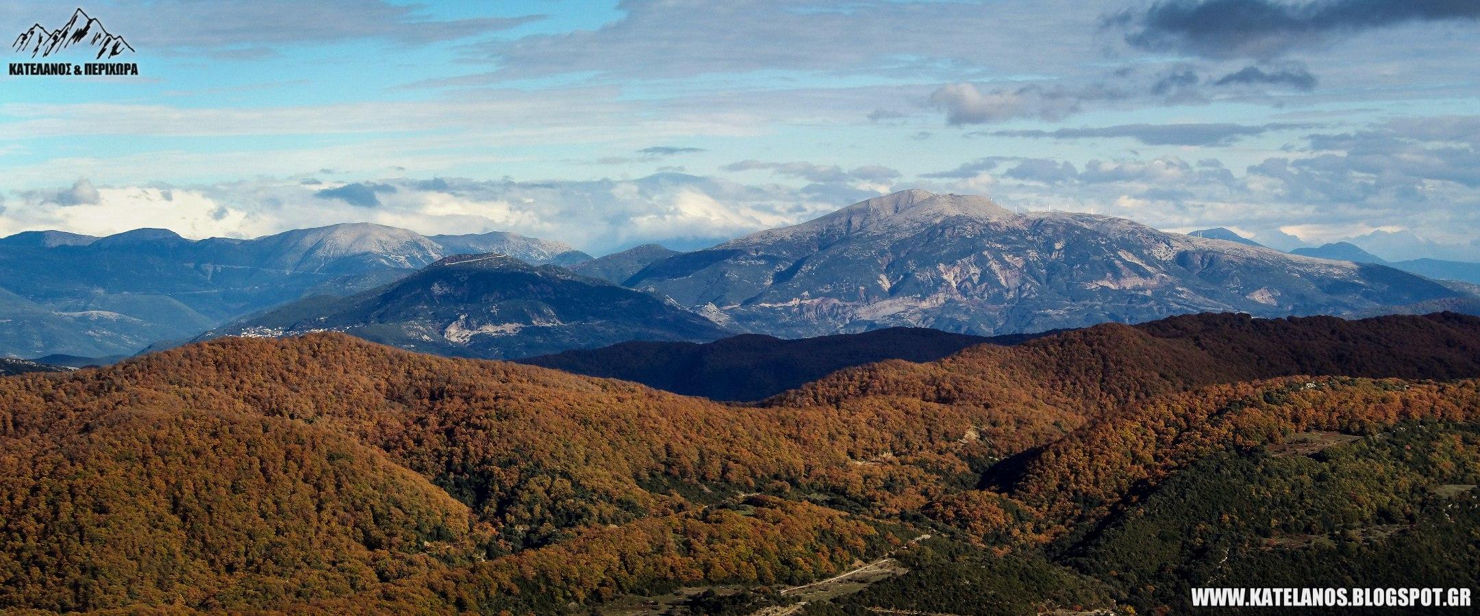 δάσος αρακύνθου βουνα ναυπακτίας ριγάνι