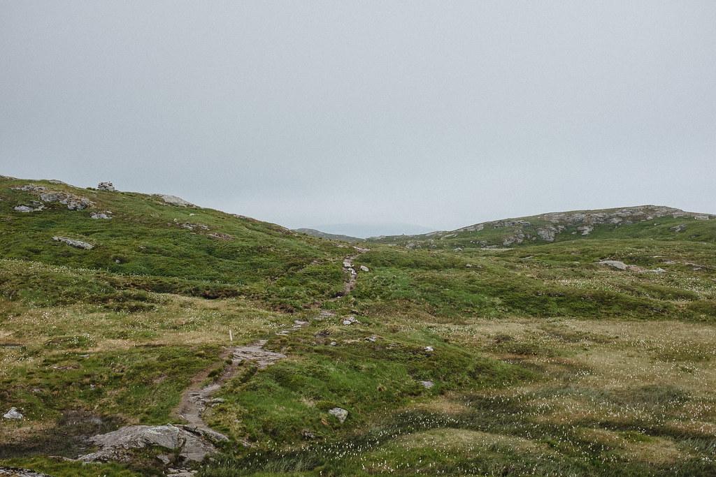 Track in highland landscape.