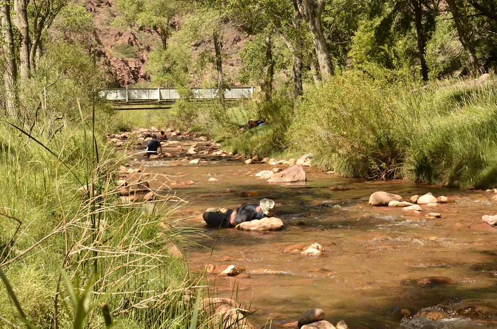 沙漠裡有水就有綠地,在谷底的Bright Angel Campground就在科羅拉多河北岸,涼爽清澈的河水讓大家等不及把全身浸泡在裡面。在美國國家公園,可以用各種方式走入大自然。