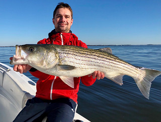 Photo of Man holding nice striped bass