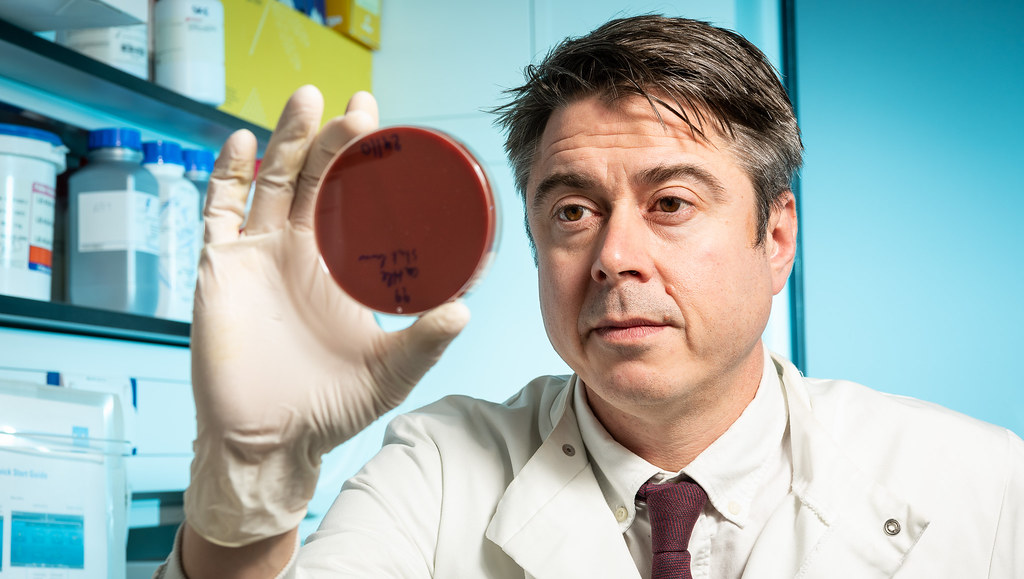 Professor Sam Sheppard looking at a petri dish containing S. epidermidis