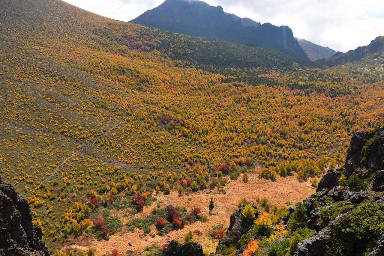 浅間山 賽の河原の紅葉