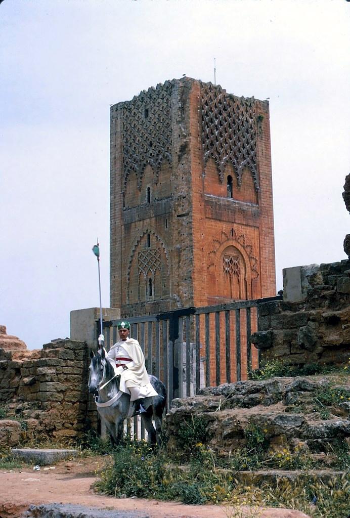 La Garde Royale Marocaine / Moroccan Royal Guard - Page 11 45227844405_dfb9deb069_o