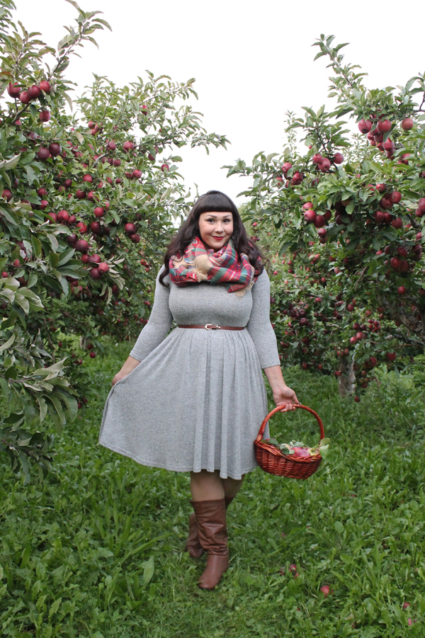 apple picking rochester ny