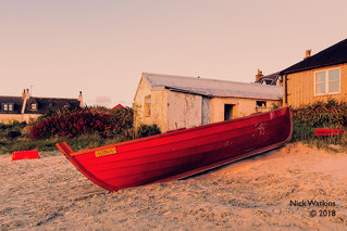 iona dawn | by nick232010