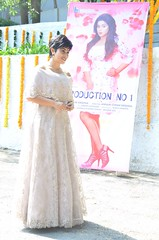Shree Krishna Creation Production No1 Movie Opening Stills