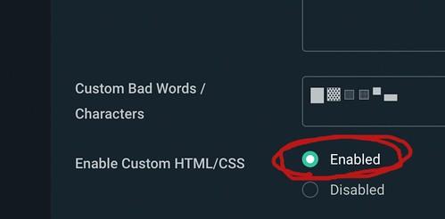 Enable Custom HTML/CSS を有効にしているところ